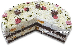 mandarinen-milchreis-torte